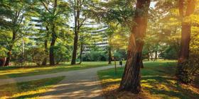 Piasta Park II aż 6 miesięcy wcześniej