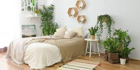 Mieszkanie w stylu tropikalnym – inspiracje