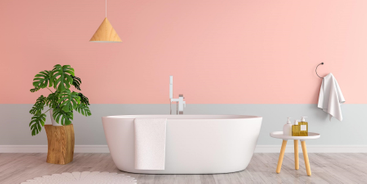 Kwiaty do łazienki – co wybrać?