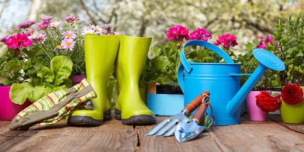 Jak urządzić ogródek warzywny w skrzyniach?